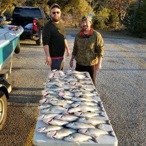 Possum Kingdom Lake sand bass trips! for Sale in Graham, TX
