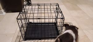 Dog kennel for small puppy for Sale in Houston, TX