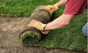 Sod installation and irrigation system for Sale in Beverly Hills, CA