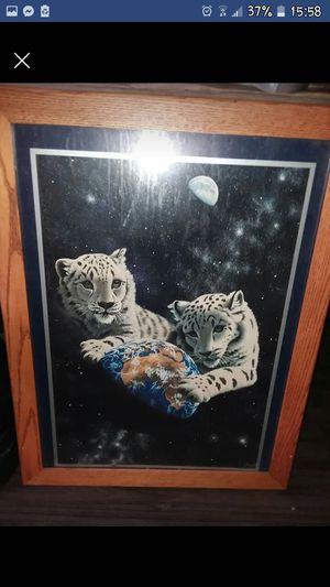 Snow leopard picture for Sale in Pittsburg, KS