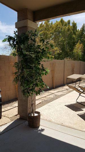 8 ft Artificial plant for Sale in Phoenix, AZ