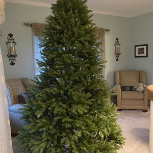 Christmas Tree for Sale in Bristol, CT