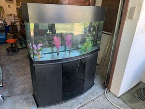 72 gallon Bowfront Fish Tank Aquarium filter light Stand for Sale in Orlando, FL