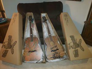 Alvarez Grateful Dead Acoustic Guitar Set NIB for Sale in Third Lake, IL