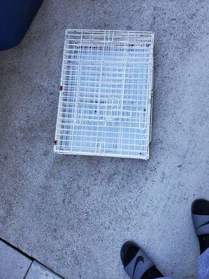 collapsible pet crate for Sale in Newark, CA