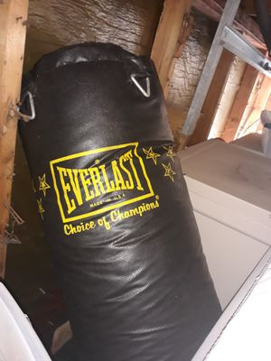 Professional punching bag and speed bag stand with chains and Everlast bag for Sale in Chicago, IL