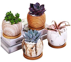 Marblic Ceramic Succulent plant pot 3.8 inch- Brand new! for Sale in Jersey City, NJ