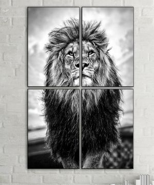 4 piece modern lion HD art picture poster print with glass frames. for Sale in Lauderdale Lakes, FL