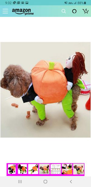 KASQA Funny Pet Dog Cat Clothes - Carrying Pumpkin Costume Fancy Puppy Apparel Jacket for Sale in Las Vegas, NV