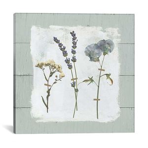 Pressed Flowers on Shiplap II, Canvas Art Print for Sale in Lexington, KY