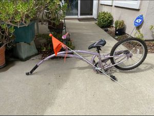 Dock-a-tot bike attachment for Sale in Roseville, CA