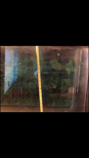 Fish tank with table for Sale in Chicopee, MA