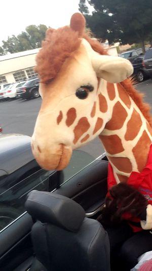 Toys R Us costume for Sale in Stockton, CA