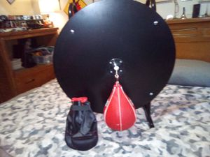 Everlast speed bag and gloves,never been used for Sale in Des Moines, WA