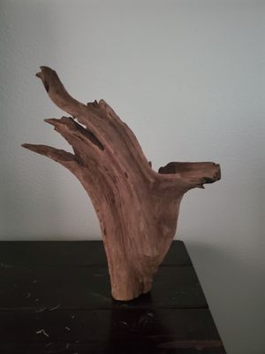 Cypress Driftwood for Sale in San Diego, CA
