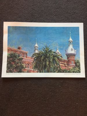 University of Tampa Painting for Sale in Tampa, FL