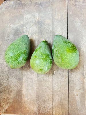 Fresh avocado for Sale in Lodi, CA