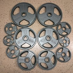 New Olympic Weight Plate Iron Set for Home Gym 245 Lb Weights for Sale in San Diego,  CA