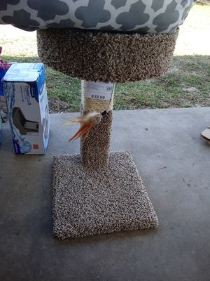 Dog cat and bird cages hamster too for Sale in Lake Wales, FL