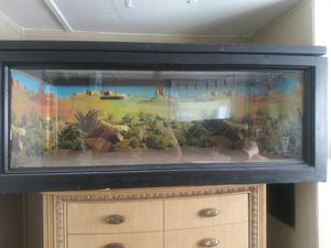 Large Reptile Cage for Sale in Lutz, FL