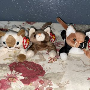 TY Original Beanie Baby Cats for Sale in Delray Beach, FL