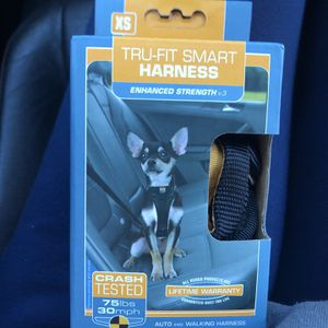 Dog Car Harness for Sale in Springfield, VA