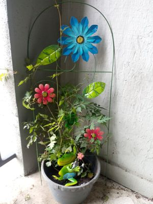 Potted outdoor plant with tressel for Sale in Houston, TX