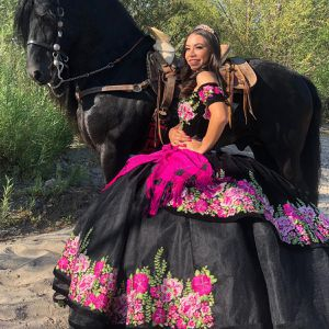 Quinceañera / Sweet 16 Dress for Sale in Anaheim, CA