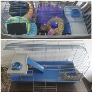 FREE cage and supplies for small pet (guinea pig) for Sale in Worcester, MA