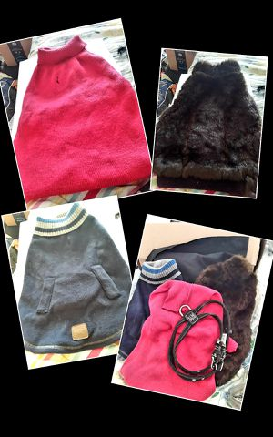 Medium size dog sweaters and coat for Sale in Evansville, IN