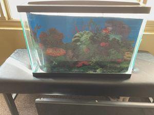 20 gallon Aqueon aquarium for Sale in Hemet, CA
