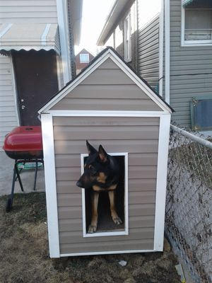 Dog howse for Sale in Chicago, IL