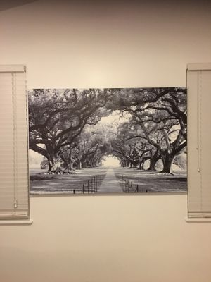 Large canvas print for Sale in Westerville, OH