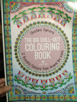 The Big CHILL out Coloring Book for Sale in Ocoee, FL