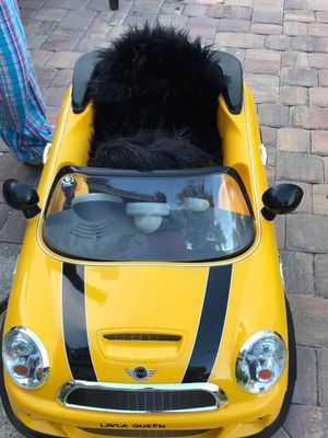 Yellow Kids Mini for Sale in Sanford, FL