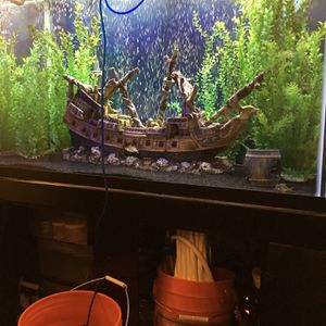 150 Gallon Fish Tank and Stand for Sale in Everett, WA