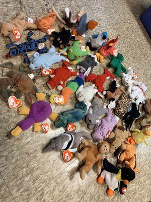 Teanie Beanie Babies for Sale in Allen Park, MI