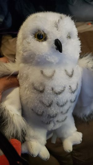 Owl Plushie for Sale in Riverside, CA