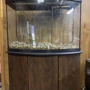 Fish Tank for Sale in Buffalo, NY