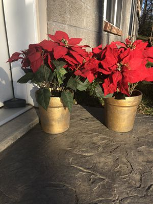 Set of 2 Poinsettias artificial for Sale in New Holland, PA