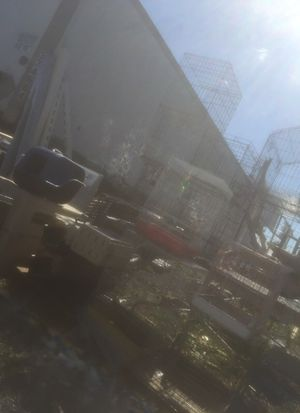 Dog 🐶 and birds 🐦 Cages for Sale in Detroit, MI