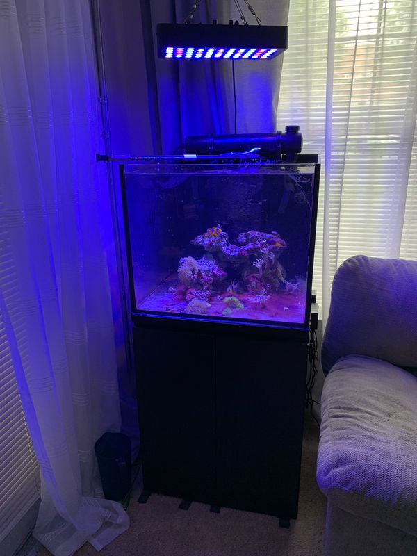 50 gallon complete reef system