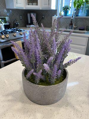 Artificial Lavender Plant for Sale in Fallston, MD