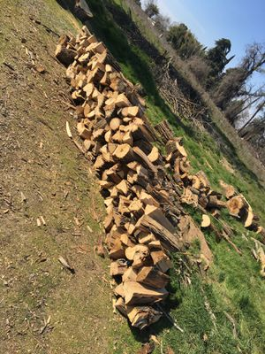 Seasoned firewood for sale come pick up $50 I'll deliver for another $50. this wood has bugs that's why it's so cheap for Sale in Fresno, CA