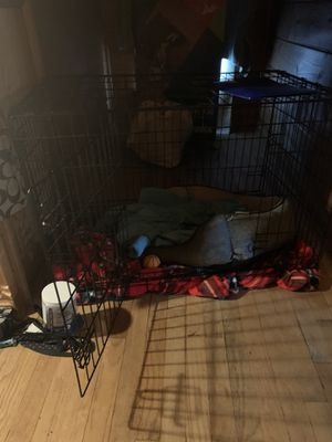 Medium size dog cage for Sale in Binghamton, NY