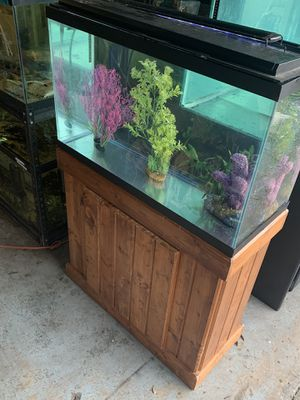 Loaded 29 gallon fish tank aquarium aquaclear filter, stand, LED light for Sale in Orlando, FL