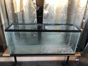 60 gallon fish tank for Sale in Whittier, CA