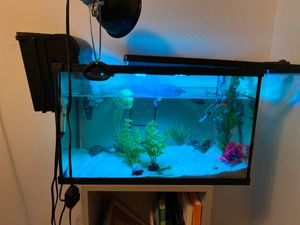 Turtle tank for Sale in Los Angeles, CA