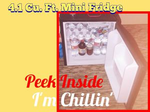 Mini Fridge @ Storage Unit Sale of Decade for Sale in Gilbert, AZ