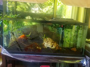 55 Gallon Aquarium, Stand and Filter with extra cartridge and more... for Sale in San Diego, CA